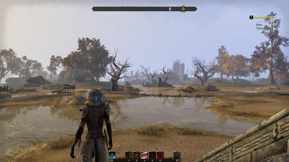cyrodiilpuddle